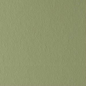 tapeta 2014 gładka z celulozą